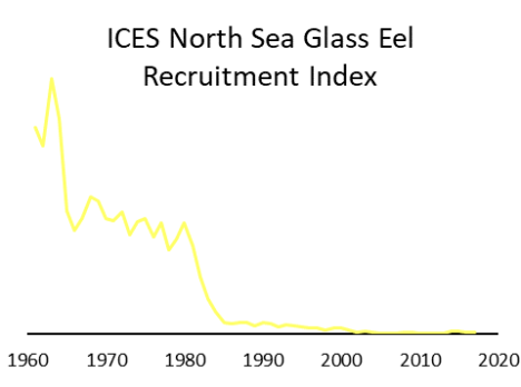 ICES North Sea glass eel recruitment index